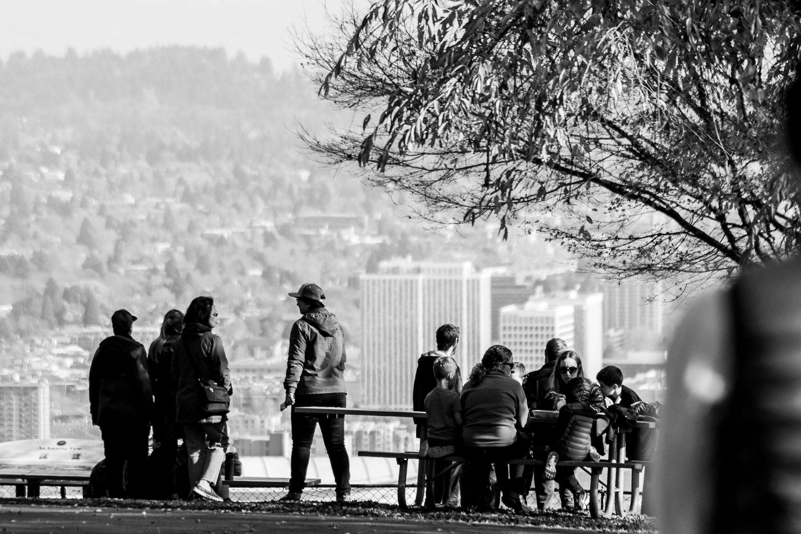 people sitting under trees near buildings